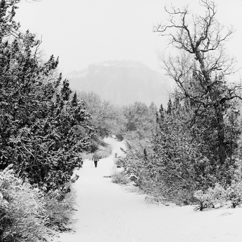 Winter Walker, Ghost Ranch