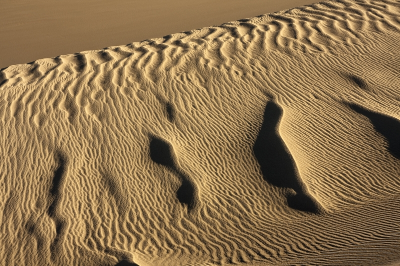 Sand Dunes – Etched For A Moment