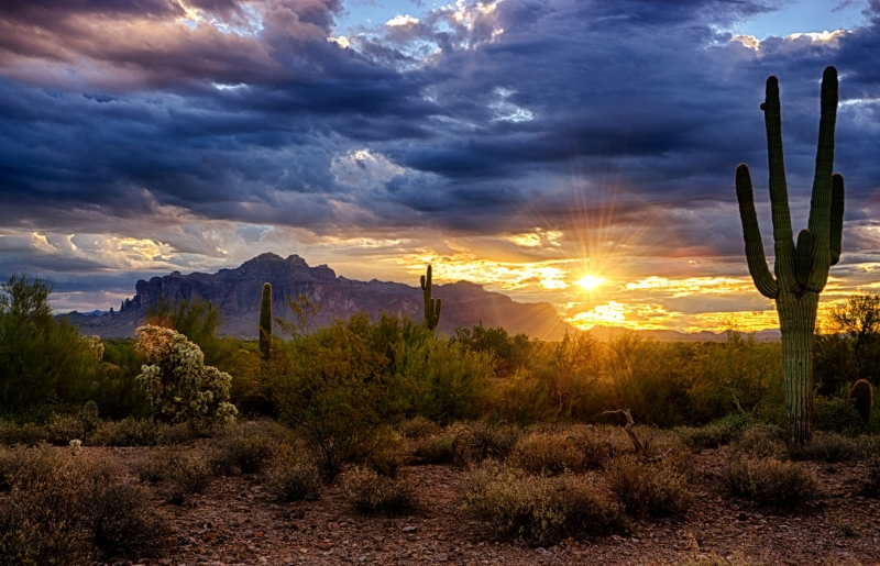 A Sonoran Desert Sunrise