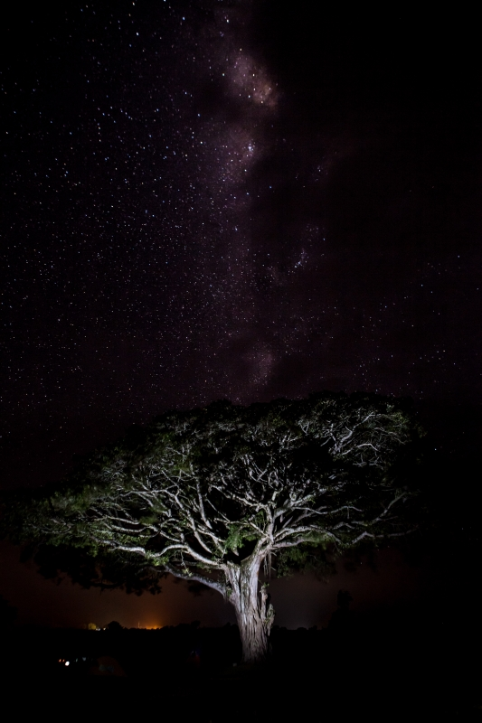 Ngorongoro Crater Milky Way