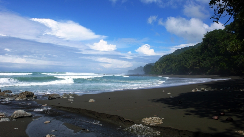 Surf's Up Costa Rica