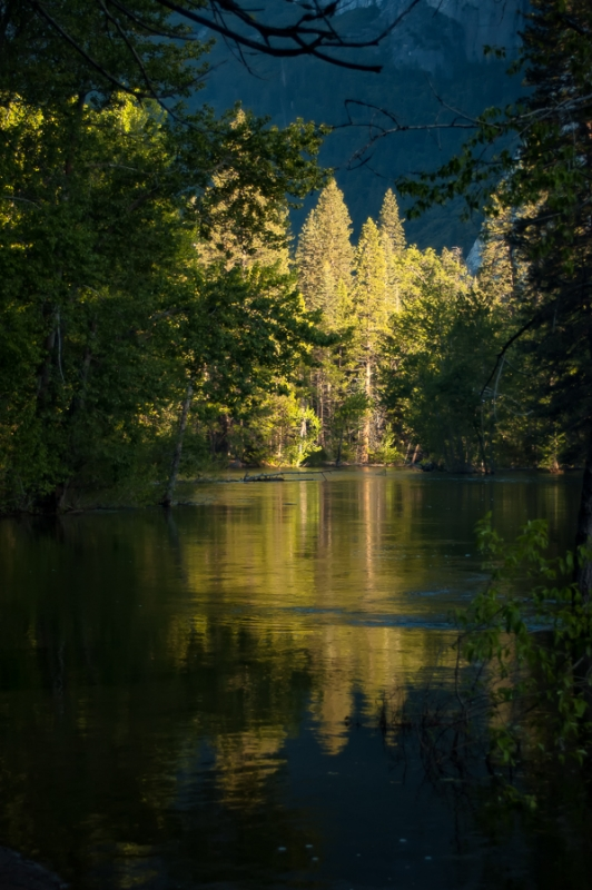 Merced River Morning