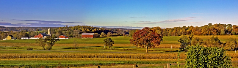 Lancaster County Autumn