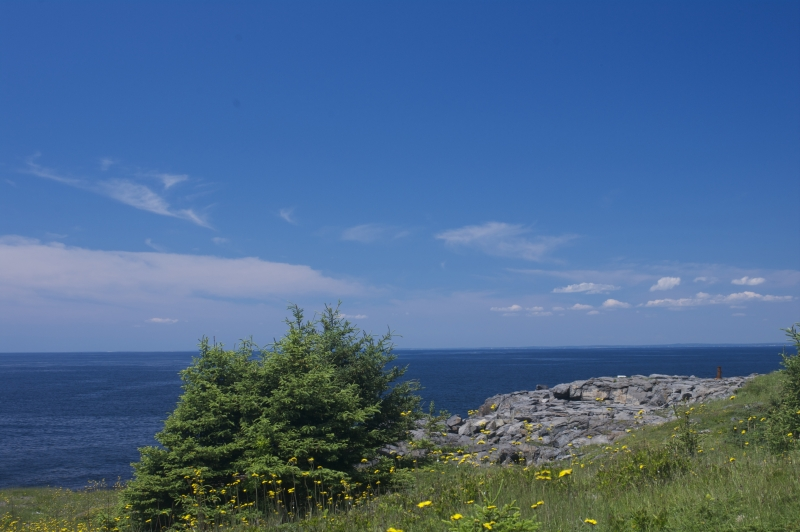 Shores Of Monhegan