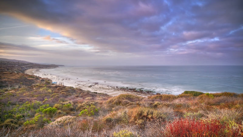 Crystal Cove Spring Sunrise
