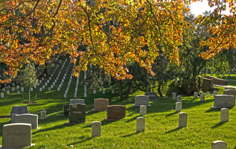 Arlington National Cemetery #4