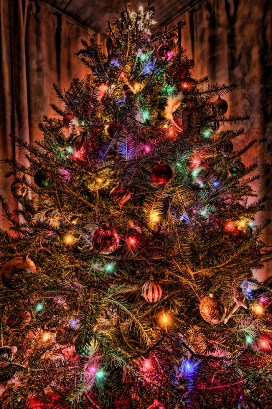 Over The Top Hdr Christmas Tree