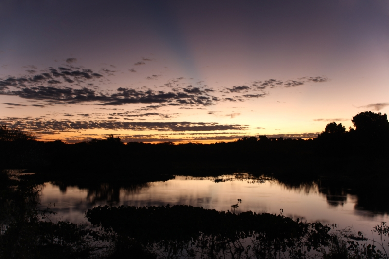 Pantanal Of Pocone Sunset