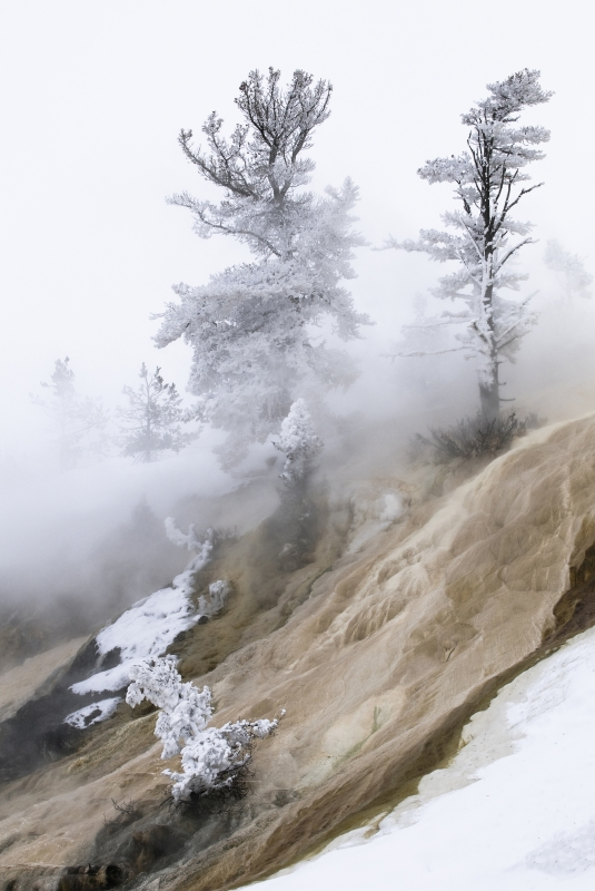 Snow And Steam