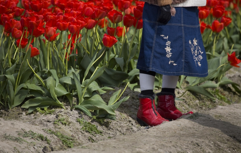 Red Boots And Tulips