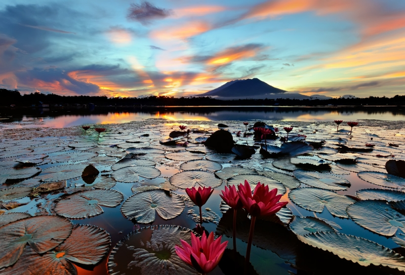 The Legend Of The Sampaloc Lake