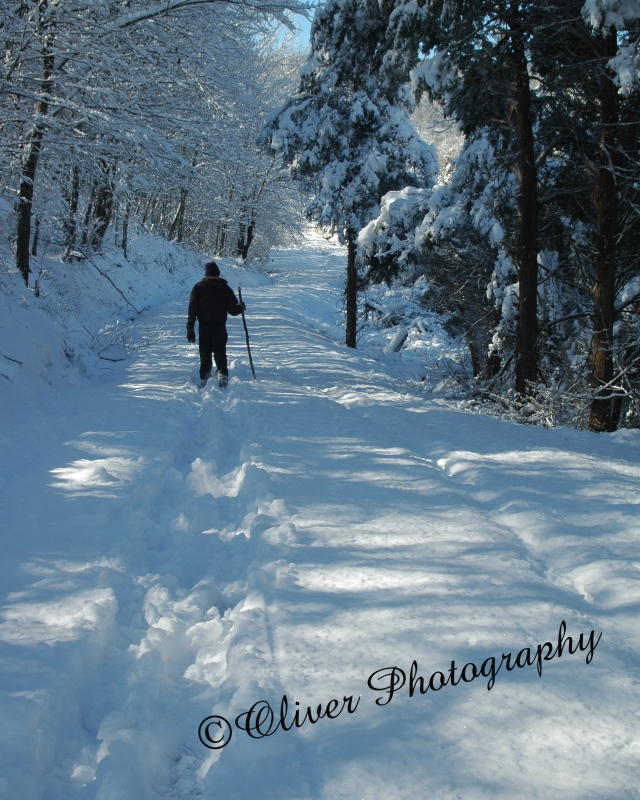 Walk In Snow On Country Road