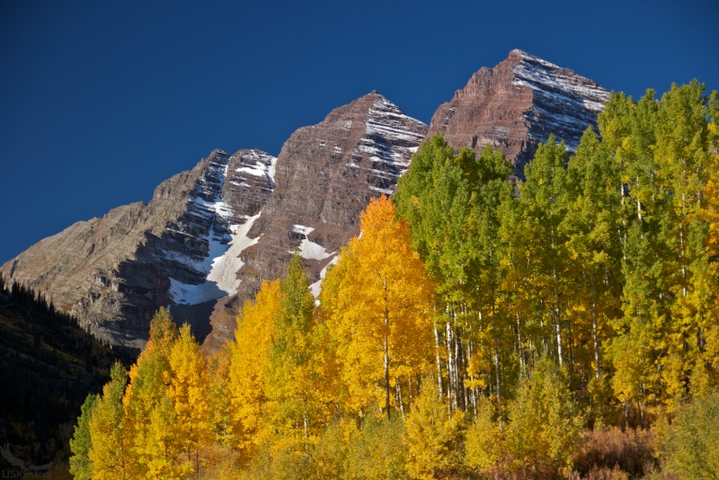 Maroon Bells And The Aspen's