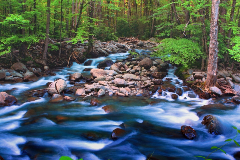 Smokey Mountain Stream 2