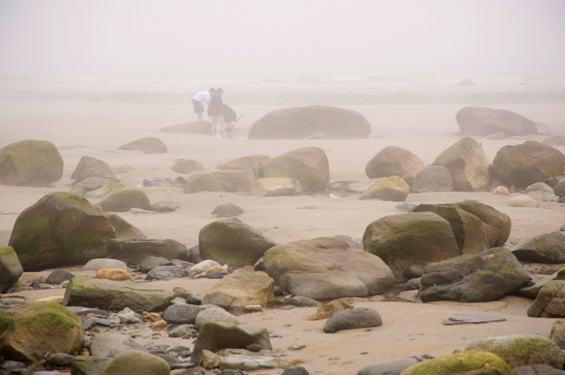 Young Explorers On Misty Maine Beach