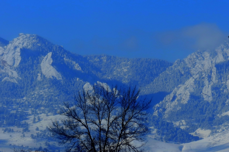 Crisp Blue Winter Sky Over Mountains And Tree