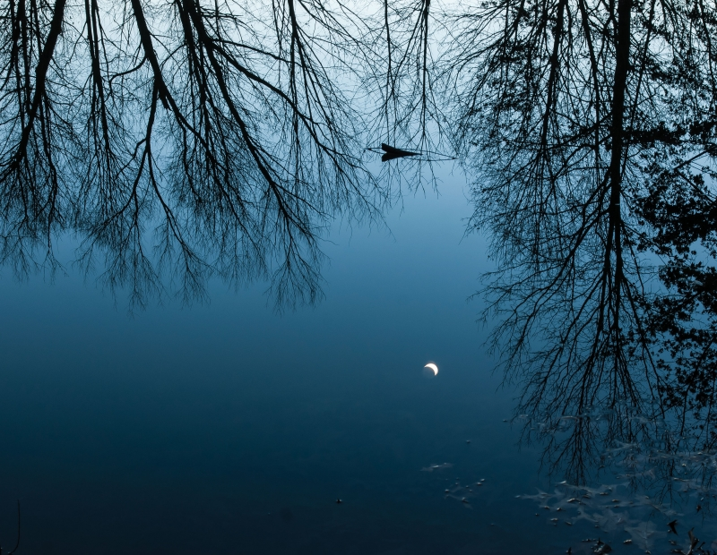 Crescent Moon Reflection