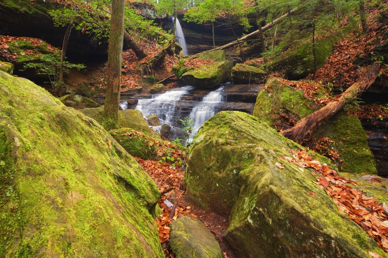 Sipsey Wilderness Waterfall