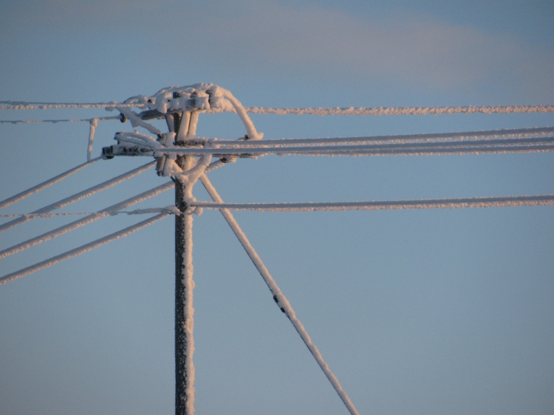 Frosted Powerlines