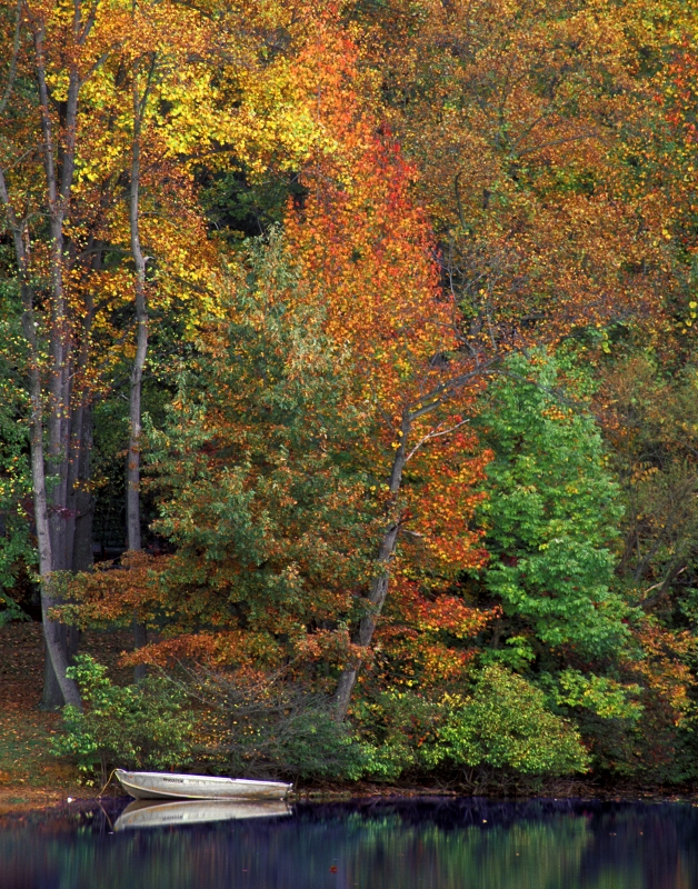 Autumn Canoe