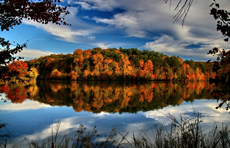 Across The Lake In Fall