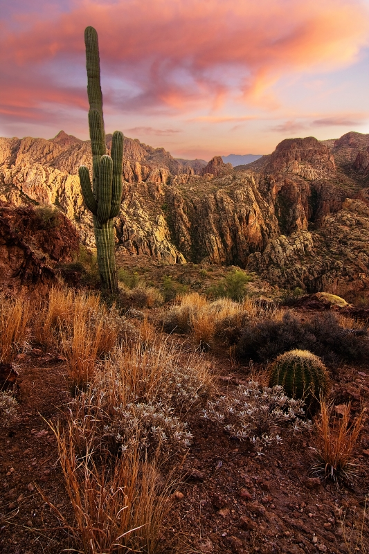 Superstition Wilderness Sunset