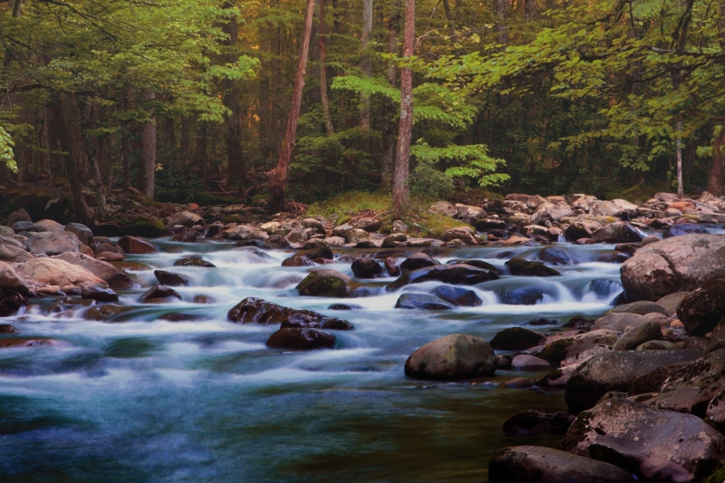 Smokey Mountain Stream 3