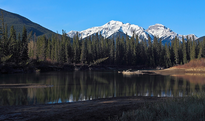 Early Morning Along The Bow River