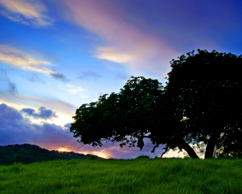 Briones Spring Sunset