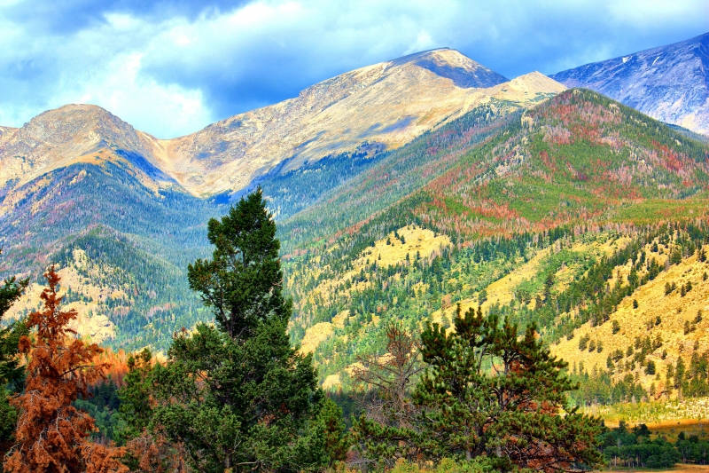 Fall In The Rocky Mountain National Park