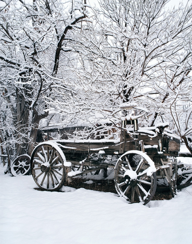 Old Wagon, On A Winter Day