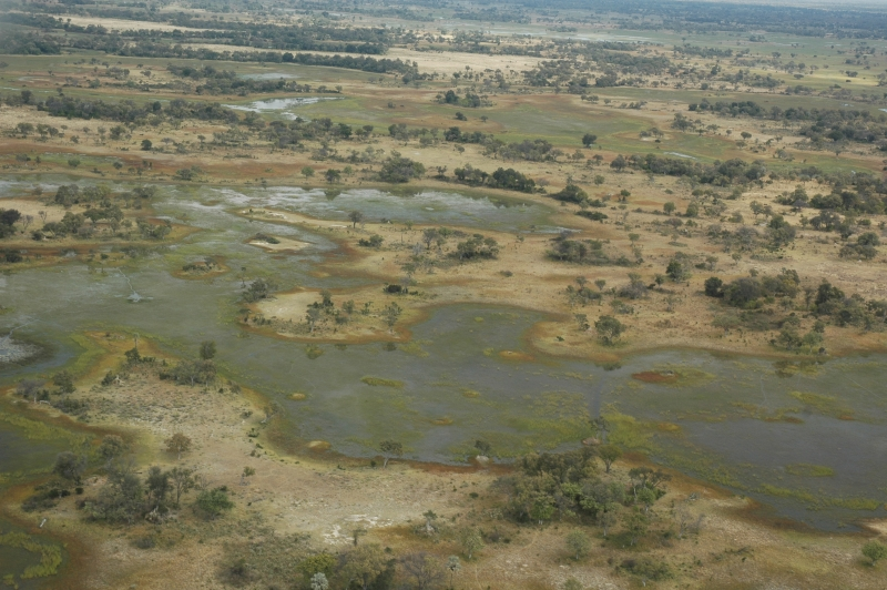 Okavango Delta From Airplane