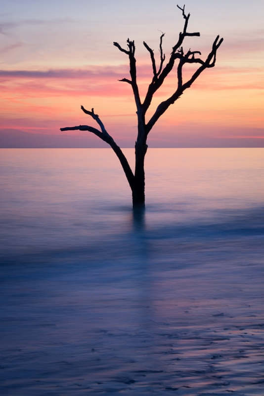 Botany Bay Solitude