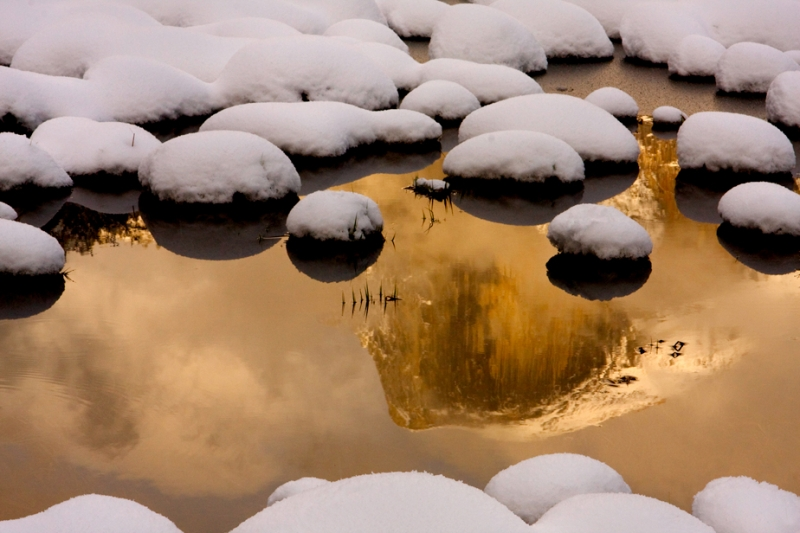 Winter Reflecton