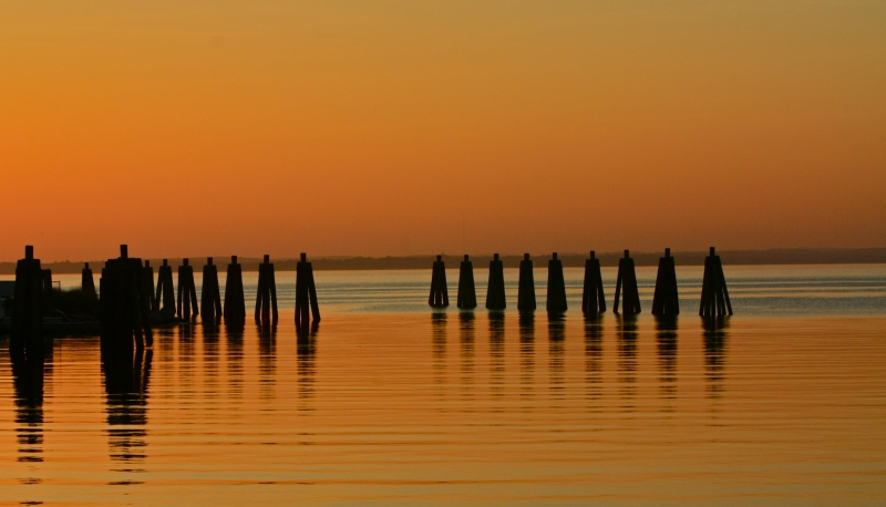 Pilings In Evening Light