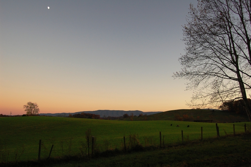 Moonrise Over The Creeper Trail