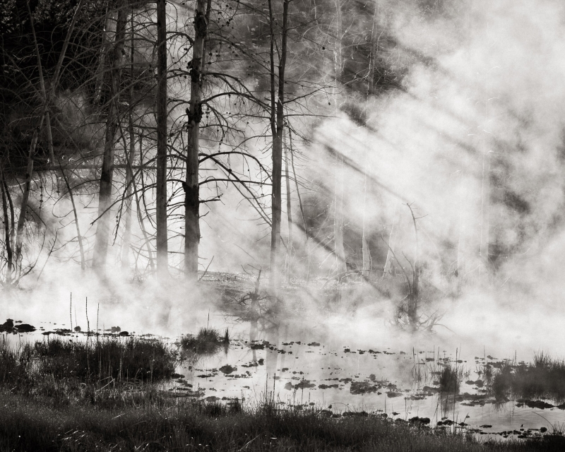 Primordial Steam – Yellowstone