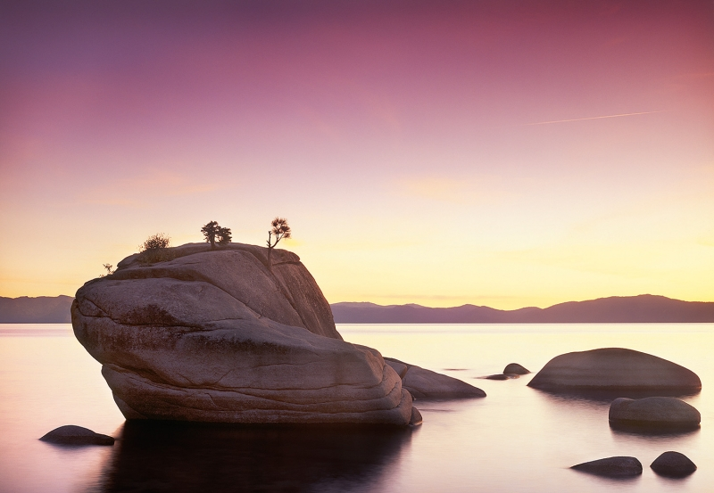 Setting Sun On Bonsai Rock
