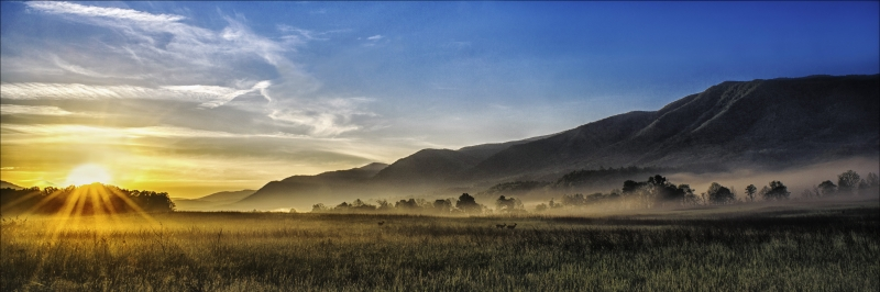Cades Cove Misty Morning