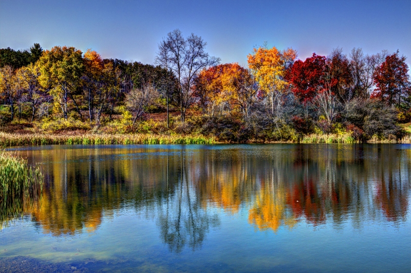 Deep Reflections Of Autumn
