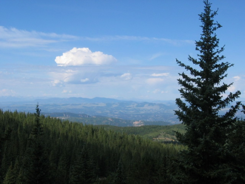 Pikes Peak Crags Trail View
