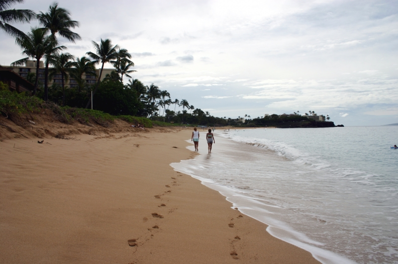 A Walk In Paradise