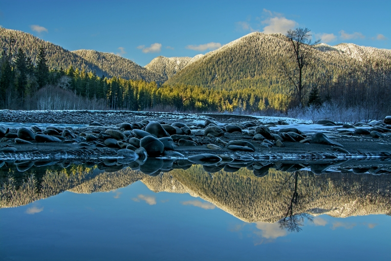 Reflecting On Quinault