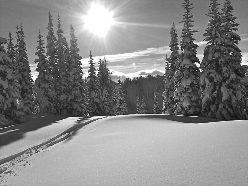 Crystal Mountain – North Backcountry