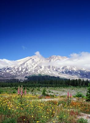 Mount St. Helens National Volcanic Monument – South Side