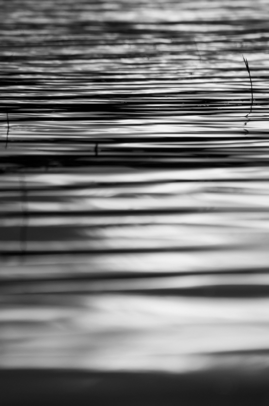 Abstract Ripples