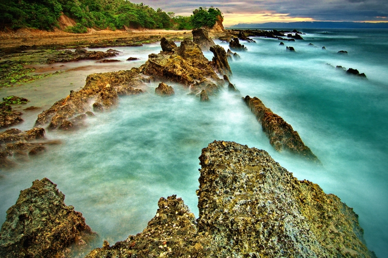The Corals Of Sawarna
