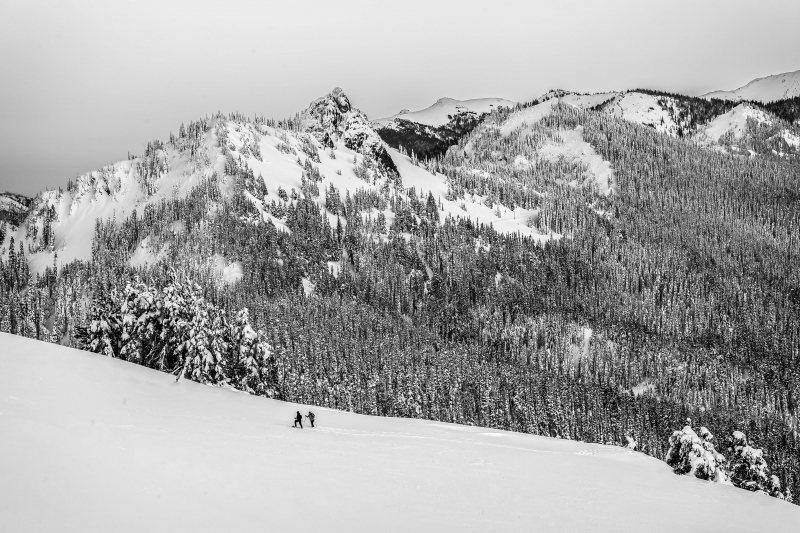 Snowshoeing On High