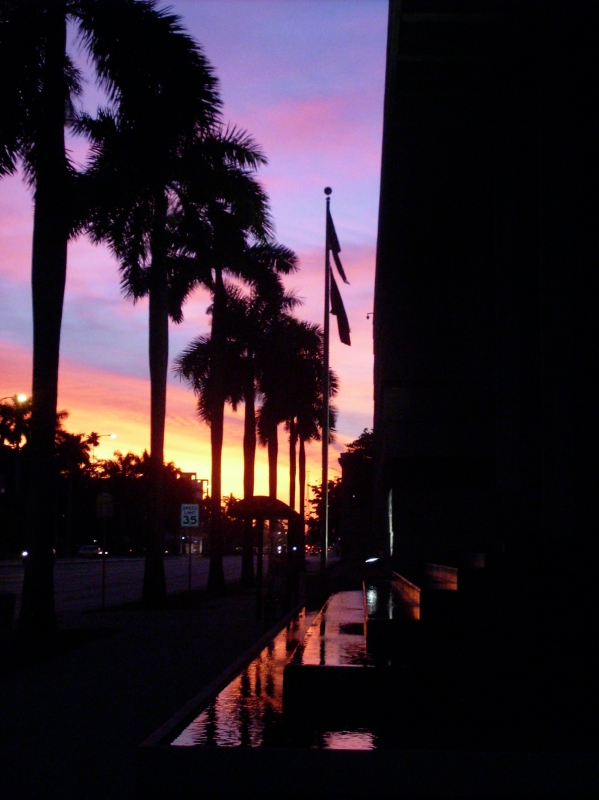 Downtown Sunset6