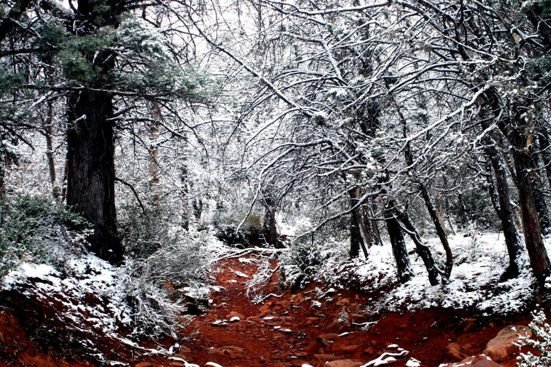 Sedona Snow Fall